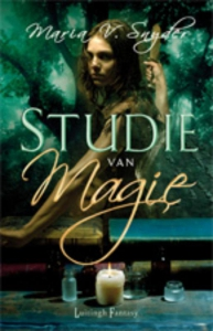 Studie -Trilogie 2 studie van Magie