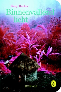 Binnenvallend licht