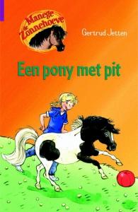 Een pony met pit