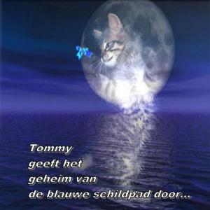 Tommy geeft het geheim van de blauwe schildpad door ...