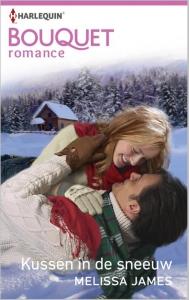 Kussen in de sneeuw