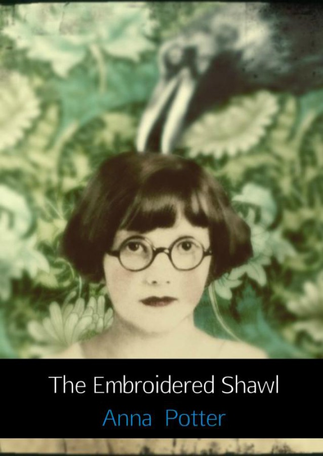 The Embroidered Shawl