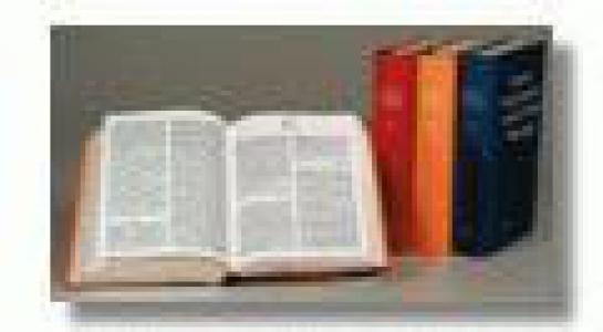 Nieuwe Encyclopedie van de Vlaamse Beweging