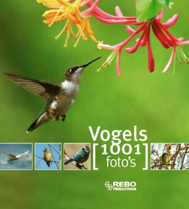 Vogels 1001 foto's
