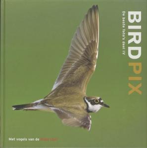 Birdpix IV