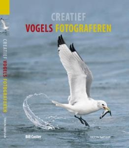 Creatief vogels fotograferen