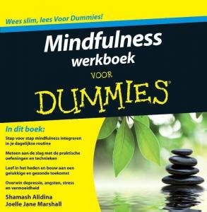 Mindfulness werkboek voor Dummies