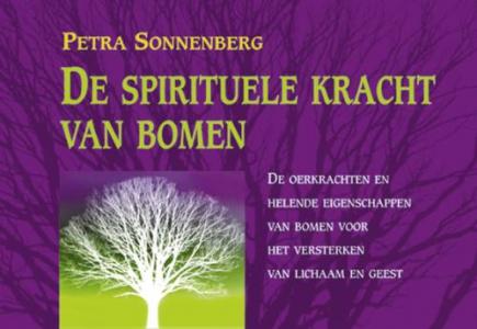 De spirituele kracht van bomen