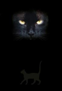 NOTEBOOK CAT'S EYES / ZWARTE KAT