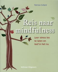 Reis naar mindfulness