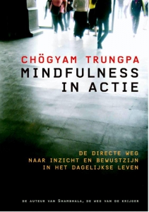 Mindfulness in actie