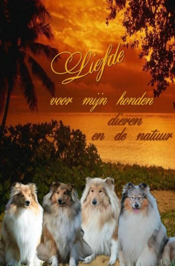 Liefde, voor mijn honden, dieren en de natuur
