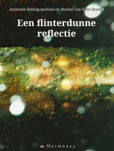 Flinterdunne reflectie