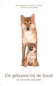 De geboorte bij de hond