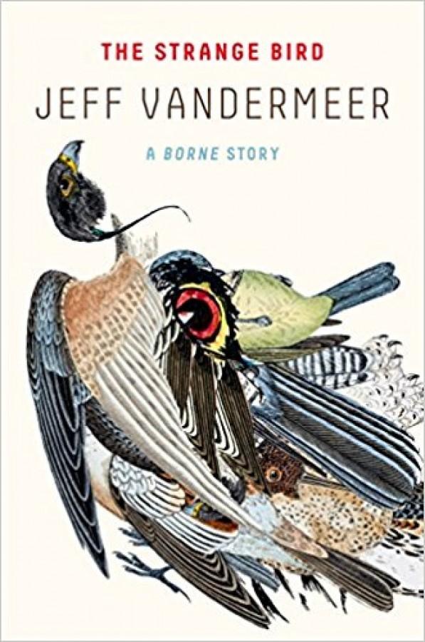 Jeff VanderMeer - The Strange Bird