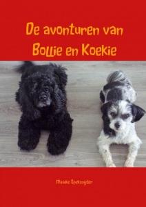 De avonturen van Bollie en Koekie