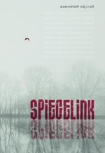 Spiegelink