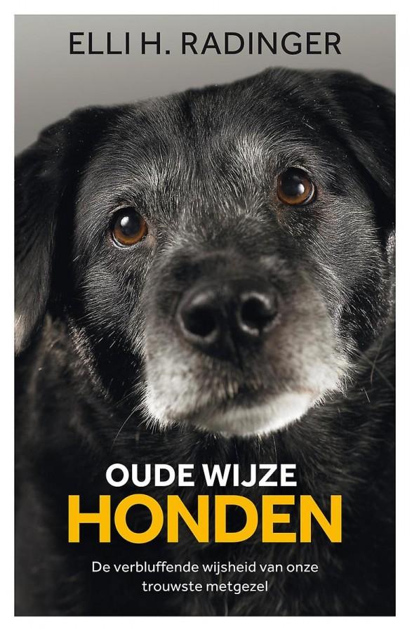 Oude wijze honden