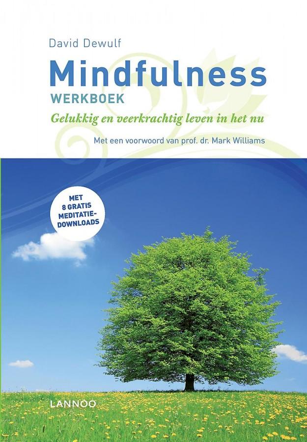 Mindfulness werkboek (e-boek)