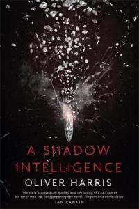 Shadow intelligence