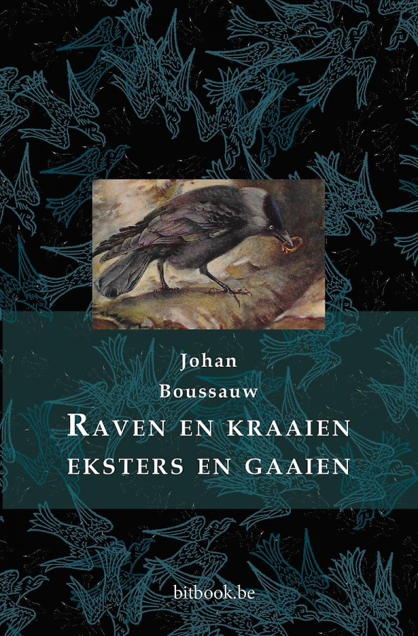 Raven en kraaien, eksters en gaaien
