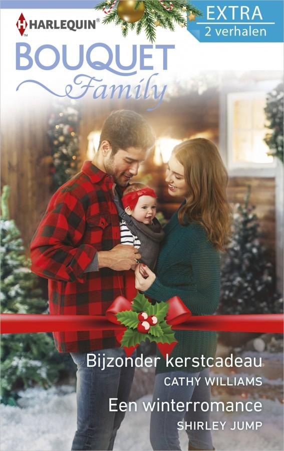 Bijzonder kerstcadeau , Een winterromance