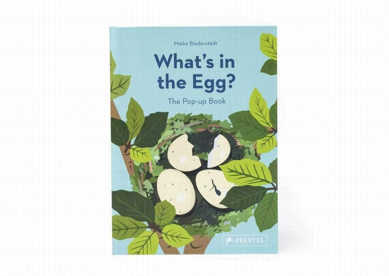 What's in the egg?: pop-up book