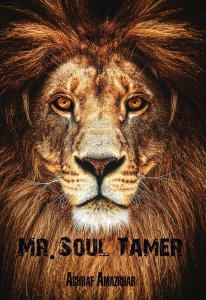 Mr. Soul Tamer