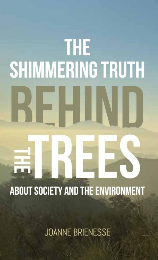 The Shimmering Truth Behind the Trees
