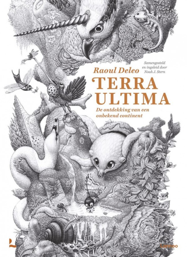 0000377597_Terra_Ultima_2_710_130_0_0