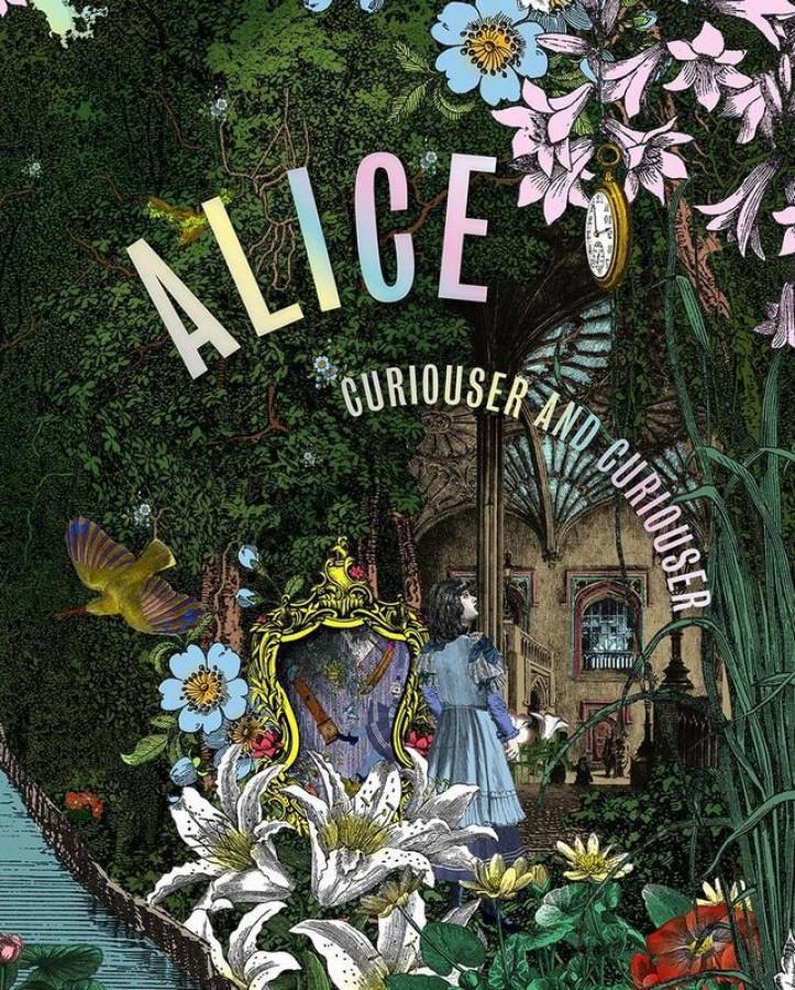Alice: down the rabbit hole