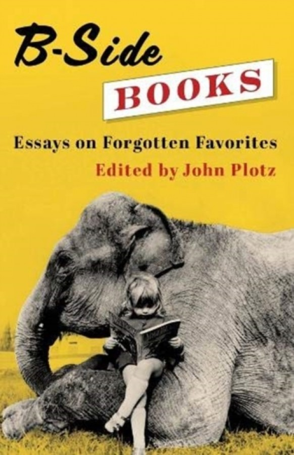 B-side books : essays on forgotten favorites