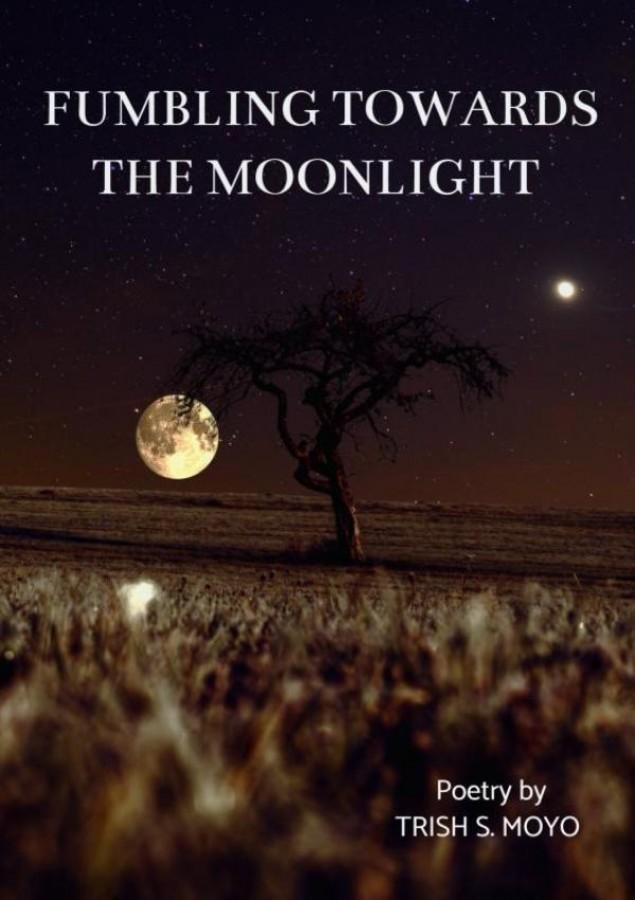 Fumbling towards the moonlight
