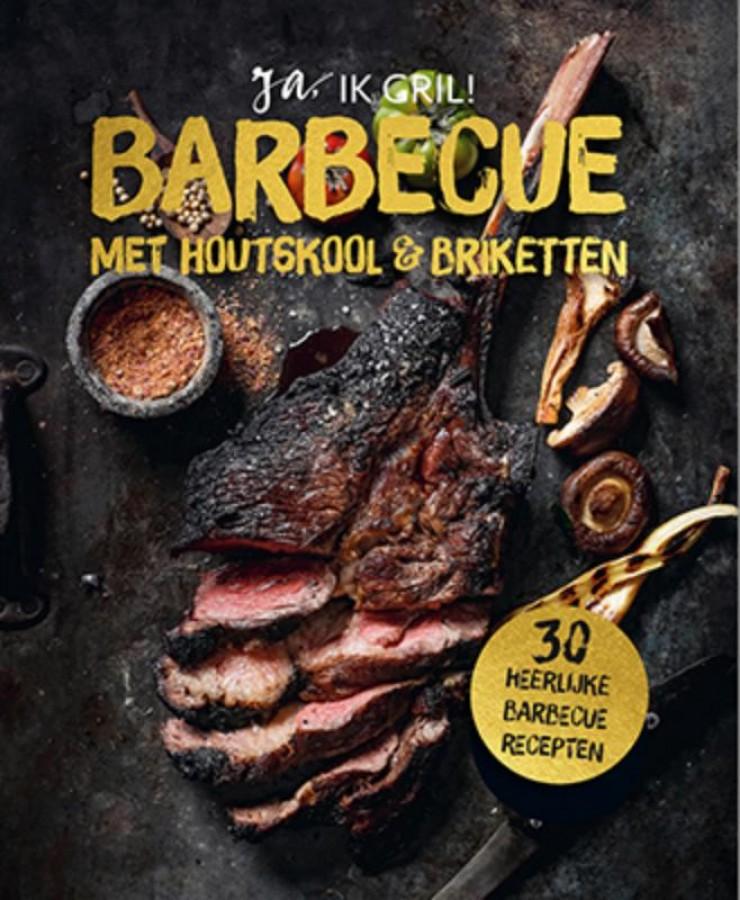 Barbecue met houtskool en briketten