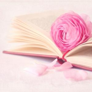Opgeruimd van marie kondo boek en recensies for Boek opgeruimd